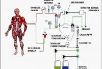 Beberapa Macam Teknologi pada Sistem Eksresi