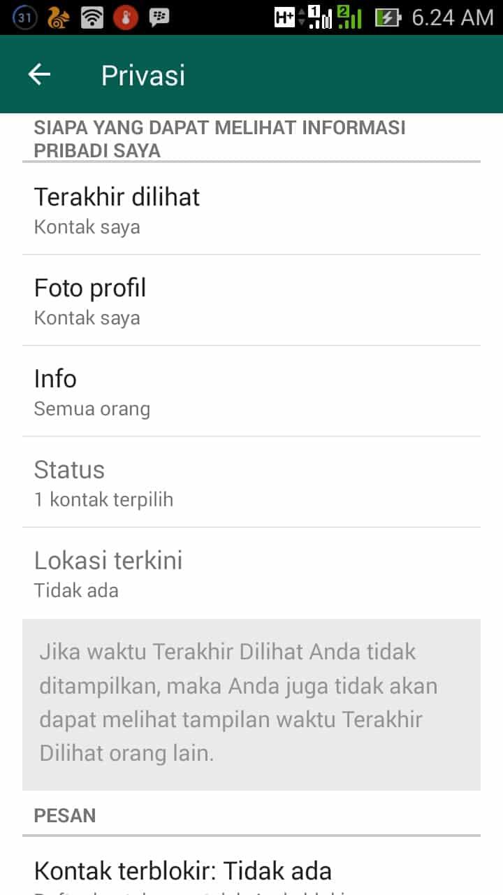 Dapat-Menyembunyikan-Status-Online