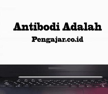 Antibodi-definisi-fungsi-jenis-struktur-cara-kerjanya