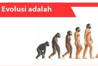Evolusi-adalah-definisi-sifat-prinsip-jenis-contoh