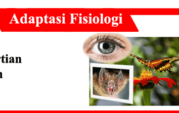 Adaptasi-Fisiologi-Konsep-Jenis-Cara-Perubahan-Faktor